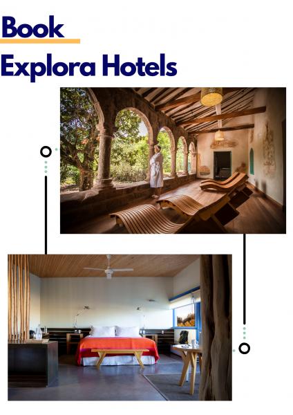 Book Royal Tulip Hotel (2)